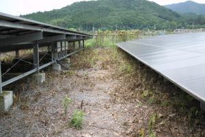 太陽光発電,除草剤