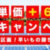 売電単価+6円の驚愕の特別キャンペーン!