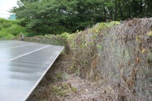 太陽光発電,ラウンドアップ