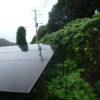 太陽光発電 フェンス周りの葛の徹底除草のやり方???