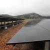 太陽光発電所1号機 除草剤の効果を確認してきました!
