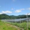 太陽光発電所の自主管理ってどれくらい大変なの???